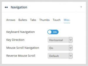 تنظیمات اسلایدر رولوشن Navigation Misc